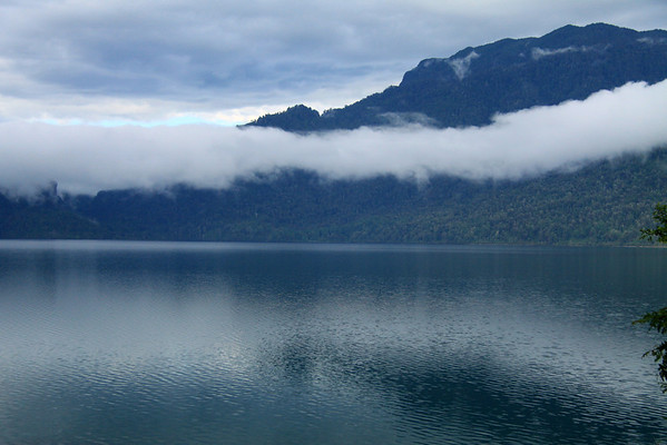 Across Lago Neltume - to a cloud-bank along the forested slope.
