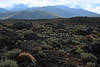 Across the xeric shrubs, copana cactus, and volcanic rock boulders along the slope from Cerro Jorquencal - beyond to the slopes and ridges leading up to Volcán Sairecábur, peaking at around 19,590 ft (5,971 m) - Loa province - northeastern Antofagasta region - at the border with the country of Bolivia (Potosi department).