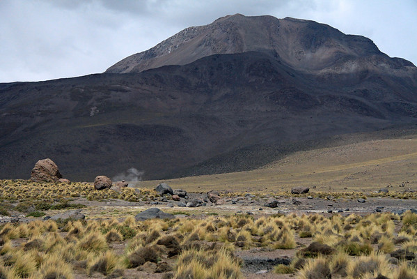 Steam rising from a fumarole amongst the igneous rock boulders, tussock grass, and xeric shrubs - Tatio Geyser Field - Loa province - northeastern Antofagasta region.