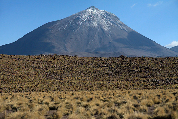 Volcán Colorado, peaking at around 18,858 ft (5,748 m - with foreground the tussock grasses amongst the volcanic rock outcrops - Loa province - northeastern Antofagasta region.