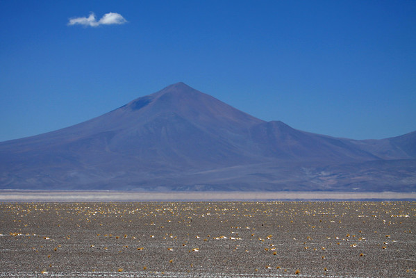 Cumulus cloud-shadow upon the slope of Cerro Pico Ola, peaking at around 13,875 ft (4,229 m) - from here amongst the tussock grass and cobble stones along the valley floor - Chañaral province - Atacama region - northern Chile.