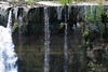 Crest of the Laja Waterfalls - amongst the lithophytic moss, ferns, herbs, and shrubs - Biobío province and region - central Chile.