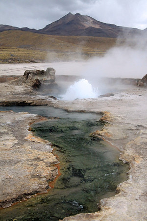 Tatio Geyser Field - hot spring erupting and flowing amongst the mineral rich sinter deposits - Loa province - northeastern Antofagasta region - Central Volcanic Zone along the Cordillera Andes.