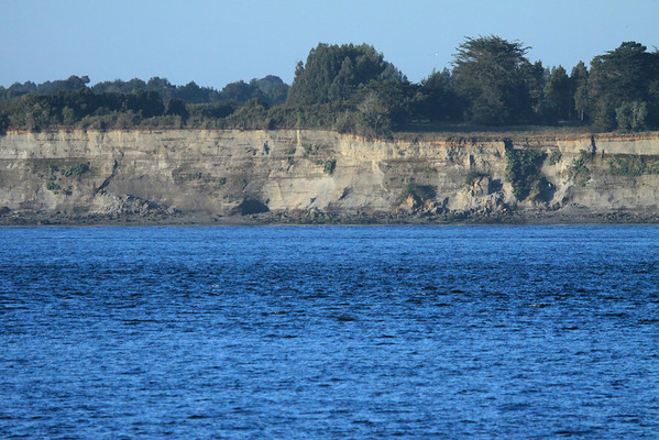 Sedimentary rock sea cliff along the Chacao Canal, connecting the Pacific Ocean to the Gulf of Ancud, here near the the mouth of the Río Máquina - Llanguihue province - Los Lagos region.