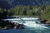 Up the glacial/snowmelt whitewater rapids of the Río Cisnes (Swans River) - here nearing its mouth into the Puyuhuapi Canal (sea channel along the Pacific) - Aisén province - Aisén region.