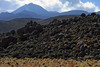 Tussock grass, xeric shrubs, and volcanic rock boulders - up to Volcán Sairecábur, peaking at around 19,590 ft (5,971 m) - Loa province - northeastern Antofagasta region.