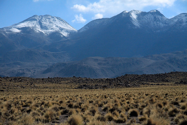 From the tussock grass and volcanic rock - up to the mid-summer season snow banks upon the Volcán Escalante (l), peaking at around 19,029 ft (5,800 m) - adjacent Volcán Ojos del Toro (Eyes of the Bull), rising up to about 18,980 ft (5,785 m) - Loa province - northeastern Antofagasta region.