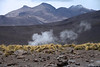 Steam rising from the Tatio Geyser Field - here amongst the tussock, grass, xerophytic shrubs, igneous rock slopes, and the sunlight and cloud-shadows upon the mid-summer snow patches above - Loa province - northeastern Antofagasta region.