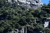 Southern Beech trees thriving amongst the igneous rock - Coyhaique province - Aisén region.