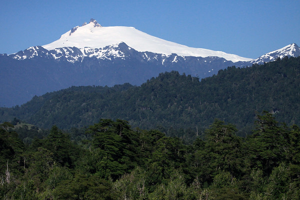 Beyond the forest of southern beech trees - to the Volcan Melimoyu, rising to about 8,005 ft. (2,440 m) - northern Aisen region.
