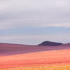 Colors Of Atacama