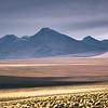 Desert Tranquil