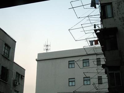 domestic composition, Shanghai