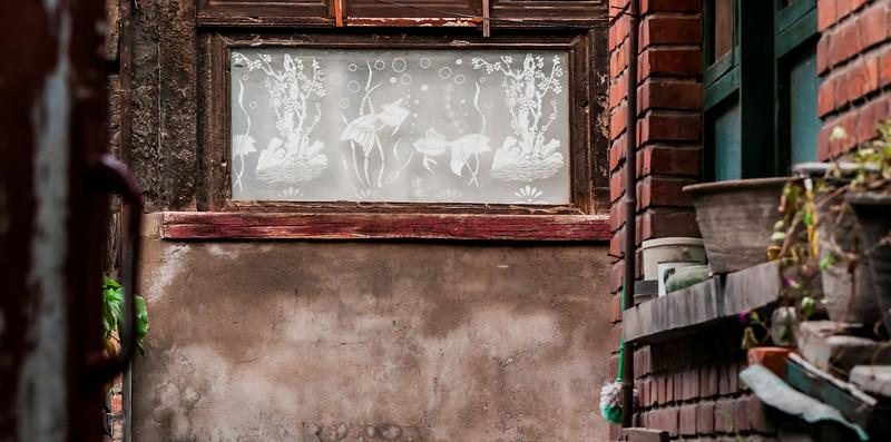 Goldfish scene in a Beijing hutong (Dongcheng, Beijing, CN - 10/21/13, 11:21:05 PM)