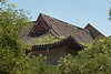 A traditional Chinese imperial-style roof. (07/26/11, 12:12:50 PM)