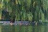 Swimmers stay cool beneath the willow trees on a hot July afternoon at Beijing's Houhai Lake. (07/26/11, 5:17:50 PM)