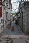 (Dongcheng Qu, Beijing Shi, CN - 07/12/12, 5:59:41 PM)