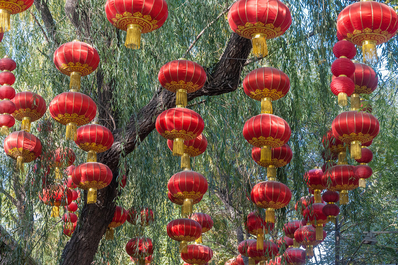 (Shichahai, Xicheng, Beijing, CN - 11/14/13, 2:44:46 PM)