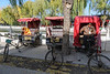 A Shichahai hutong pedicab tour guide takes a break by Houhai lake. (Shichahai, Xicheng, - 11/14/13, 1:12:55 PM)