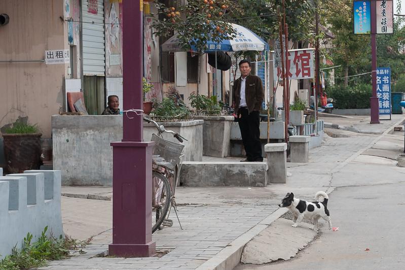 (Yindu Qu, Anyang Shi, Henan Sheng, CN - 10/24/16, 11:42:24 AM)