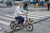A man rides a moped thropugh an Anyang intersection. (Beiguan Qu, Anyang Shi, Henan Sheng, CN - 10/23/16, 4:38:04 PM)