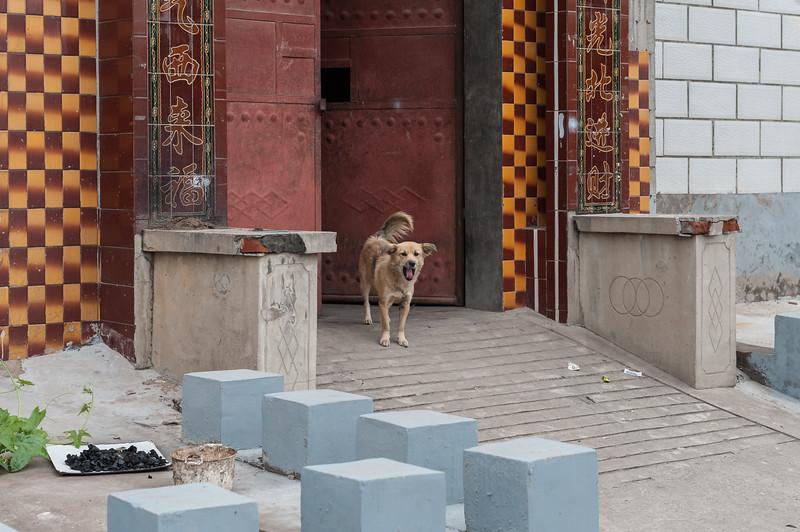 (Yindu Qu, Anyang Shi, Henan Sheng, CN - 10/24/16, 11:39:50 AM)