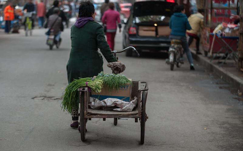 A woman walks her cart filled with green onions down an Anyang food-market street. (Beiguan Qu, Anyang Shi, Henan Sheng, CN - 10/25/16, 3:55:58 PM)