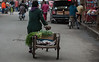 A woman walks her cart filled with green onions down an Anyang food-market street. (Beiguan Qu, Anyang Shi, Henan Sheng, CN - 10/25/16, 3:55:58 PM)