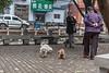 (Beiguan Qu, Anyang Shi, Henan Sheng, CN - 10/23/16, 4:44:37 PM)