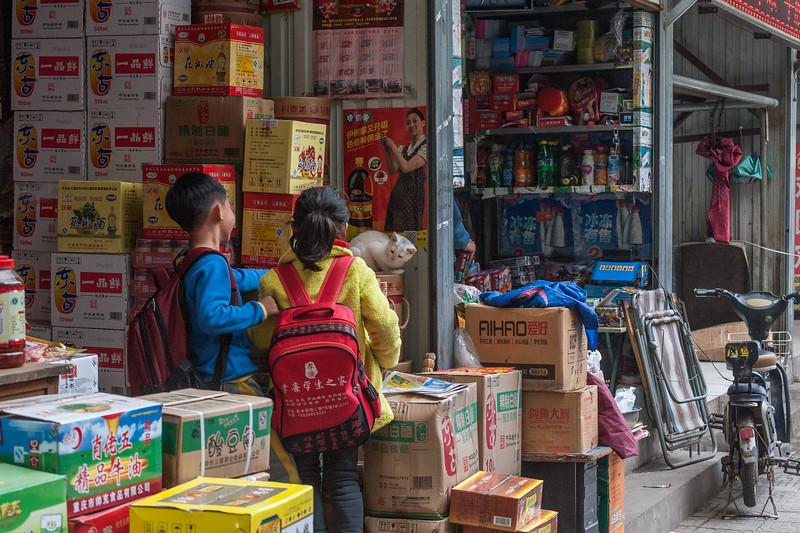Children play with a cat in an Anyang storefront. (Beiguan Qu, Anyang Shi, Henan Sheng, CN - 10/25/16, 3:36:57 PM)