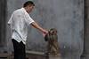 A man gives a bottle of water to one of his three performing monkeys in the entrance plaza of a restored village on Baohua Mountain. (Jurong Shi, Zhenjiang Shi, Jiangsu Sheng, CN - 06/07/18, 2:47:17 PM)