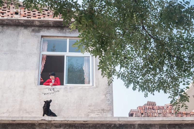 Xiaotun village (Yindu, Anyang, Henan, CN - 10/26/13, 11:33:29 AM)