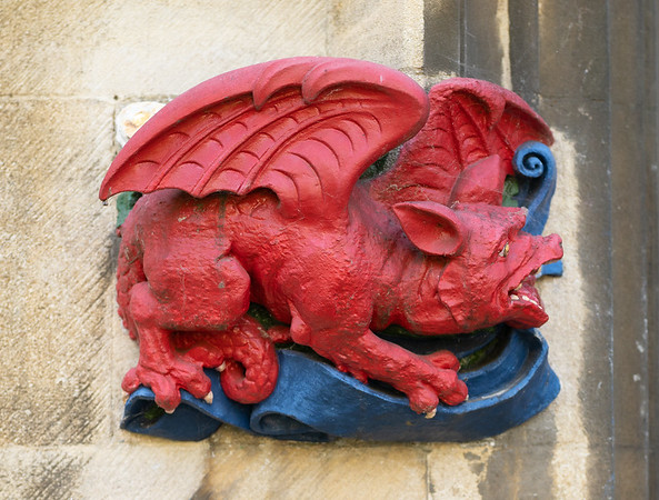 The Great Red Dragon in Christ's College, Cambridge (Sep 2021)