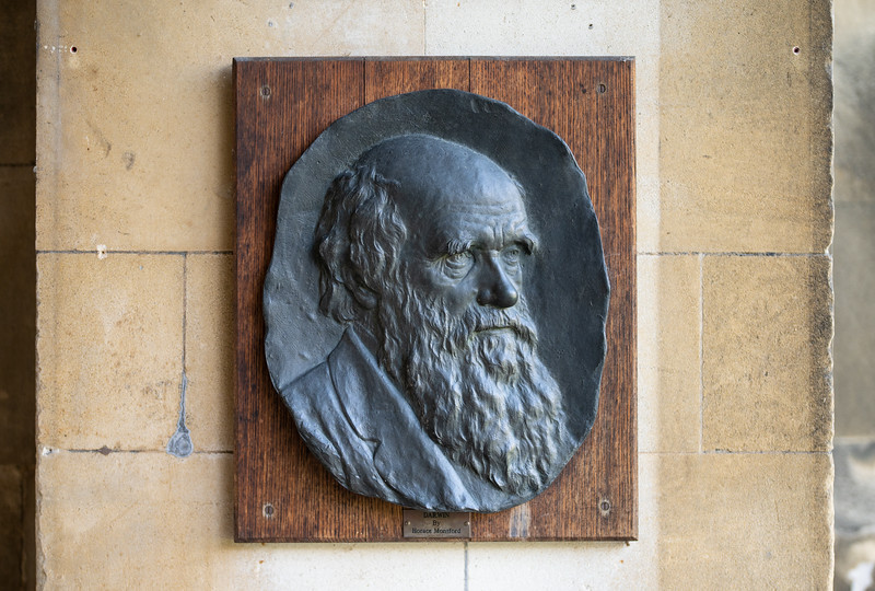 Sculpture of Charles Darwin at Christ's College, Cambridge (Sep 2021)