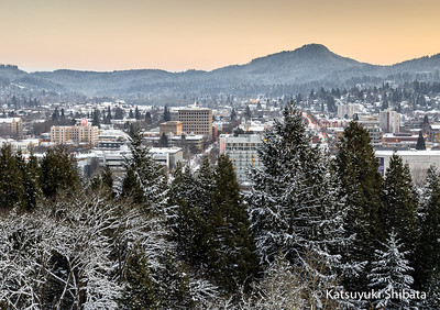 GC-094: December Snow #1 - View from Skinner Butte December 7, 2013 Eugene, Oregon