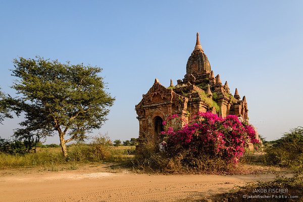 Ancient Pagoda on the templefield of Bagan