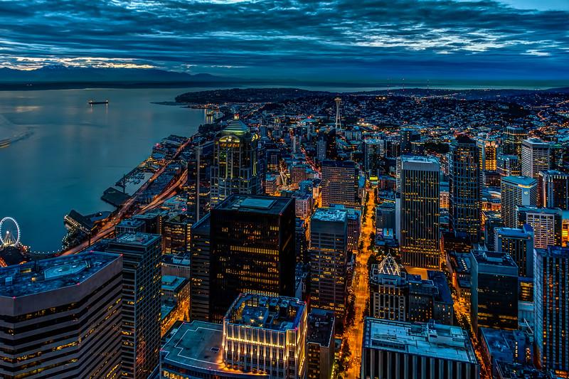 A Seattle View