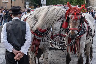 Horse Carriage - Staroměstské náměstí, Prague, Czech Republic - May 18, 2019