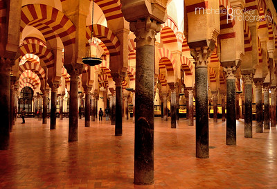 A forest of pillars...Cordoba Mesquita.