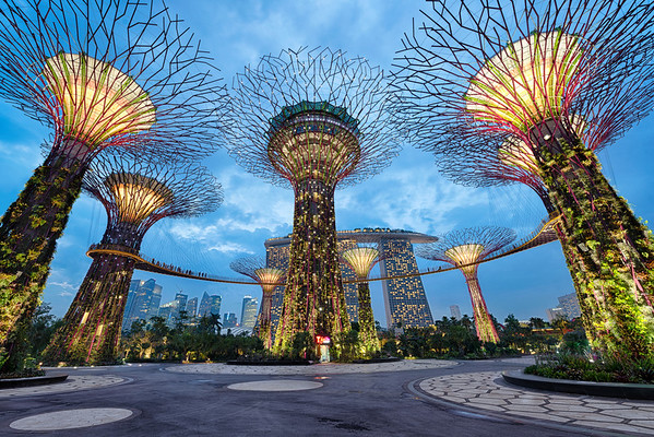Under The Supertrees || Singapore