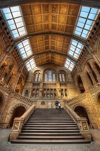 Natural History || London England