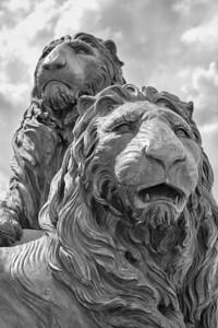 San Marco Lions San Marco/Jacksonville