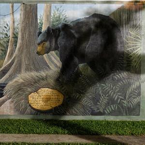 The Lost Bear Club - 10
