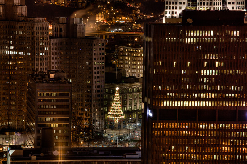 Christmas Tree Pitts.jpg