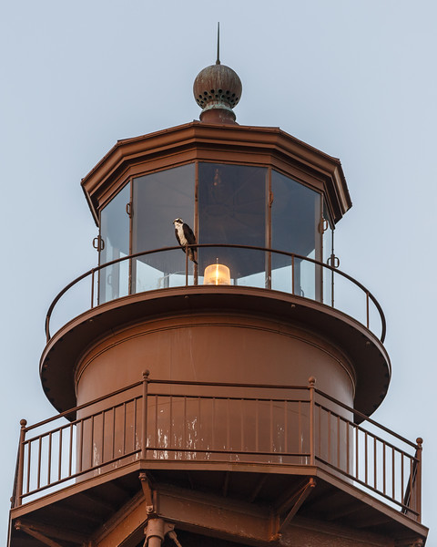 Sanabel Island Lighthouse-4096