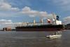 Savannah River-7531