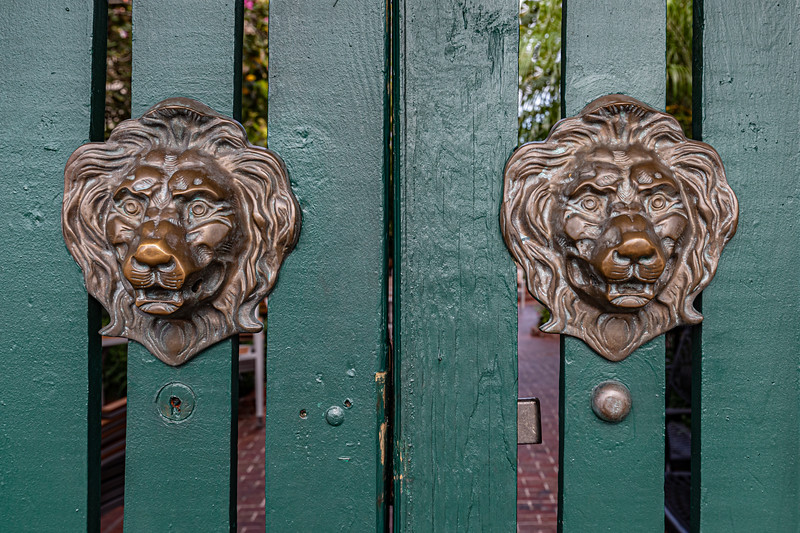 Lions Gate-0140
