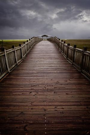 Tilden Norris Marsh Walk & Pavilion