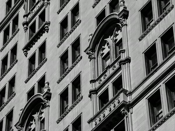 Trinity's Windows