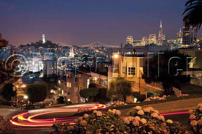 Lombard St SF